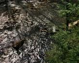 Upper Mill River from the Robert Francis Bridge