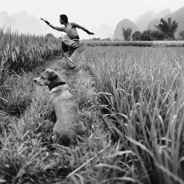 Tandem, China 2011