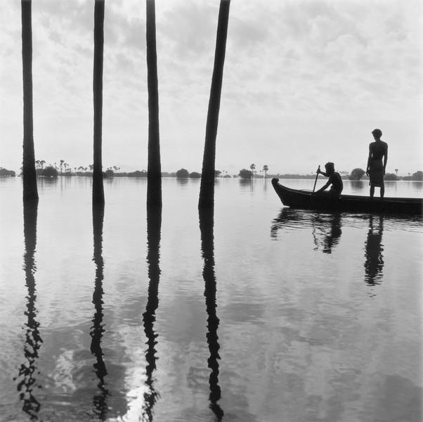 Four Palms, Burma 2004