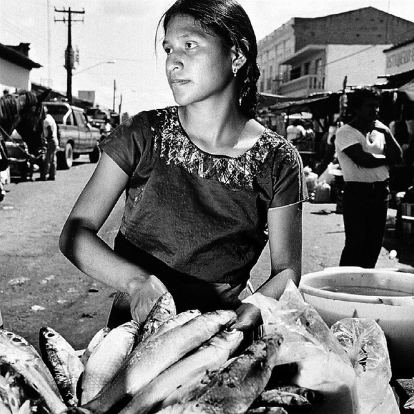 Fishmonger, Juchitan, Oaxaca
